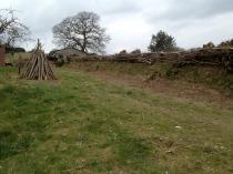 Devon bank and firewood wigwam