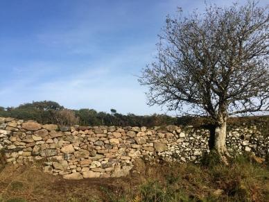 Granite wall repair