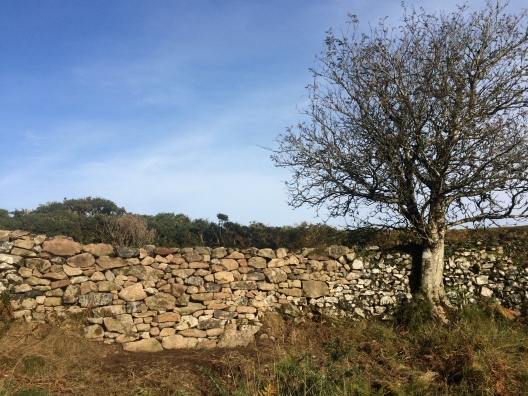 Granite dry stone wall repair