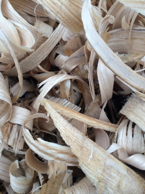 chestnut shavings
