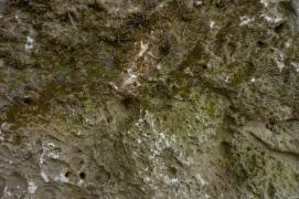 old limestone boulder