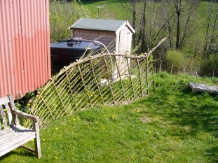 Living willow fence panel