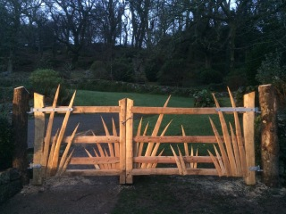 two matching spikey cleft chestnut gates